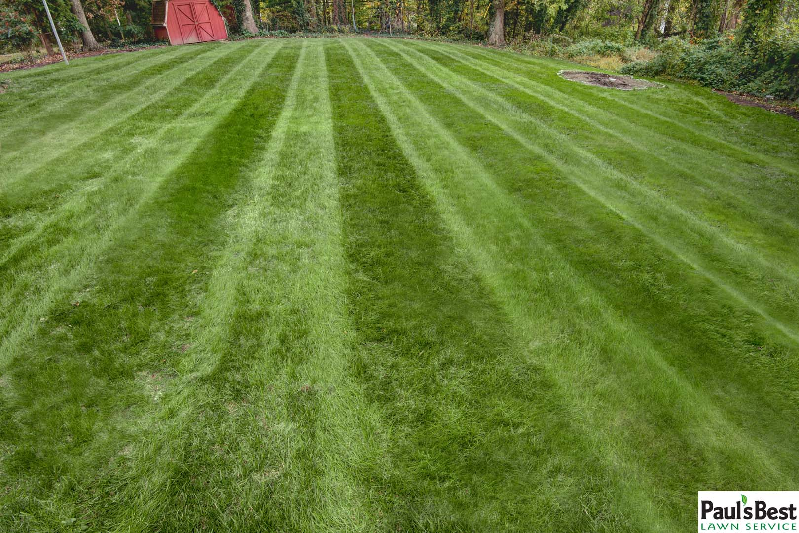 Fertilize Before Or After Mowing
