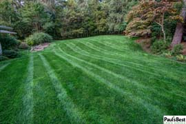 Mowing and Turf Program in Mclean VA | Back Yard Oasis in McLean, VA