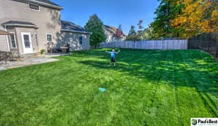 Playing on thick turf | Paul's Best Will Help Grow Healthy Grass Where Kids Can Play. That's the Whole Purpose of Lawn, Isn't It?