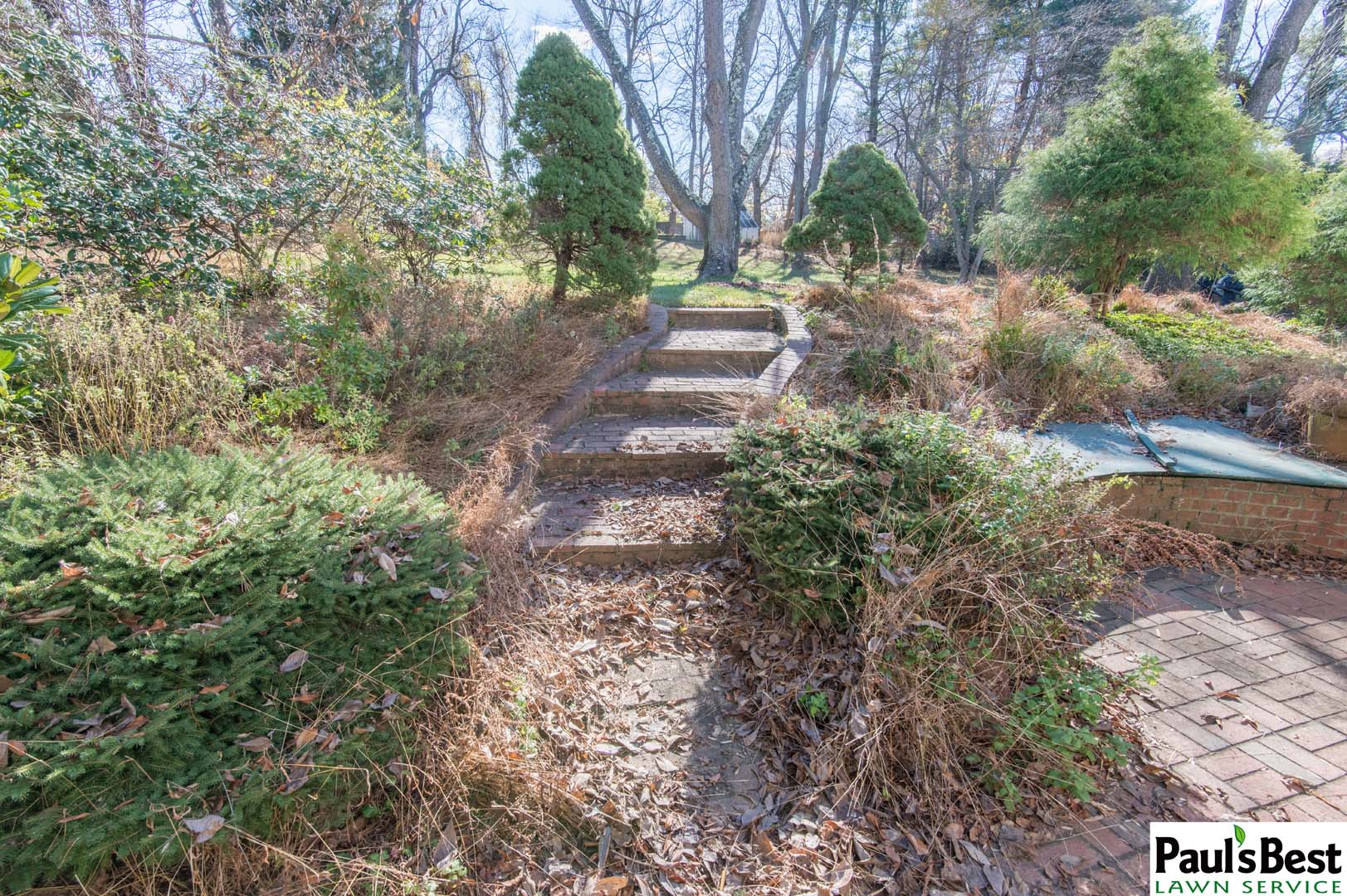 https://paulsbestlawn.com/pbls-img/portfolio/routine-property-maintenance/before-and-after/web-ready/large/BAPM1-b-After-Leaf-Clean-up-and-Trimming-in-McLean-VA.jpg