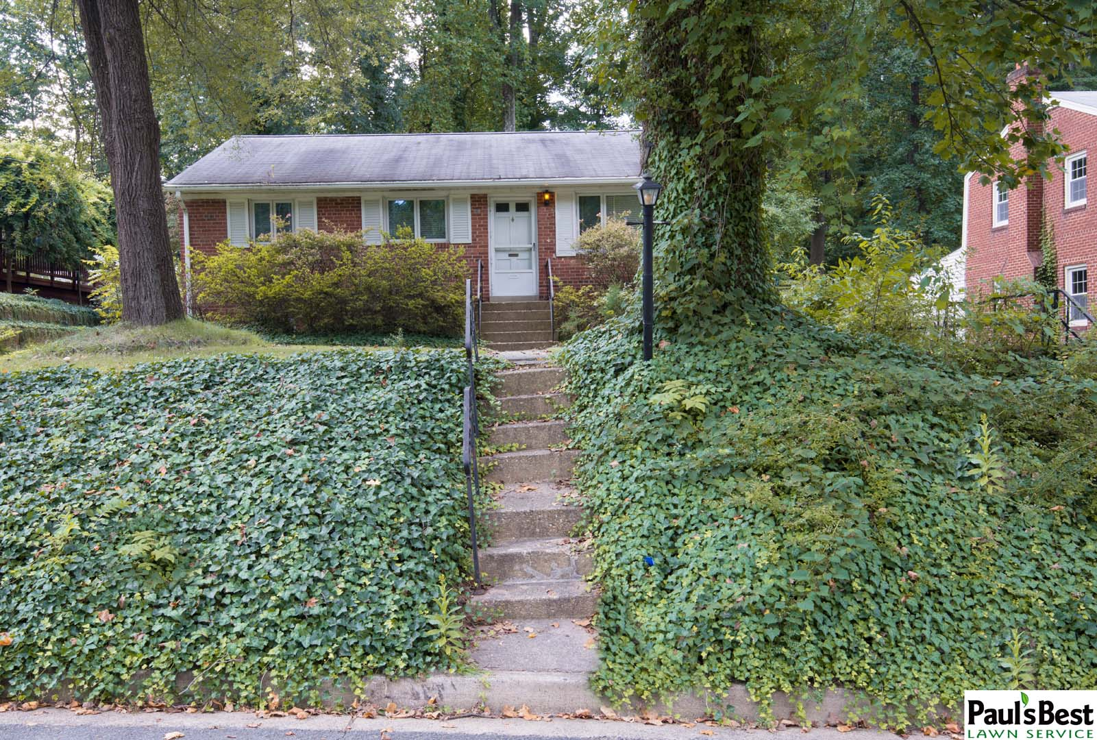 https://paulsbestlawn.com/pbls-img/portfolio/routine-property-maintenance/before-and-after/web-ready/large/BAPM1-d-After-General-Clean-up-Trimming-Ivy-and-Shrubs-in-Falls-Church-VA.jpg