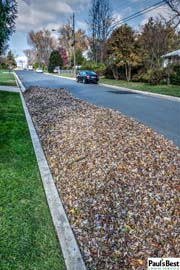 Leaf Removal in Vienna, VA | Paul's Best Leaf Clean-up or DIY Leaf Clean-up? You Decide